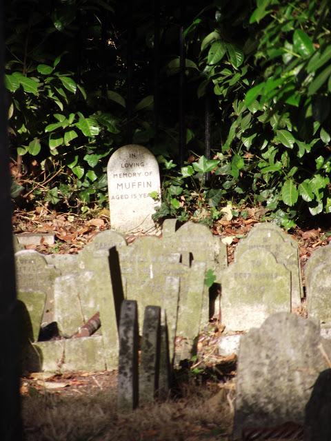 Pet cemetery in Hyde Park London